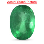 2.60 Cts of 10.00x7.80x5.40 mm AA Oval Natural Emerald ( 1 pc ) Loose Gemstone