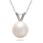6.0 mm Fresh Water Pearl Pendant in 14K White Gold
