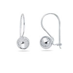 Ball Earrings in 14K White Gold