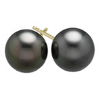 12.5-13 mm Tahitian Cultured Pearl (AA) Earrings in 18K Yellow Gold