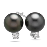 0.15 Cts Diamond & 12.5-13 mm Tahitian Cultured Pearl (AAA) Earrings in 14K White Gold
